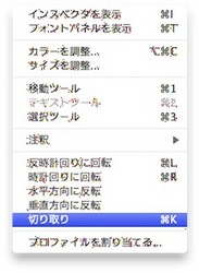 スクリーンショット(2010-04-17 22.48.26).jpg